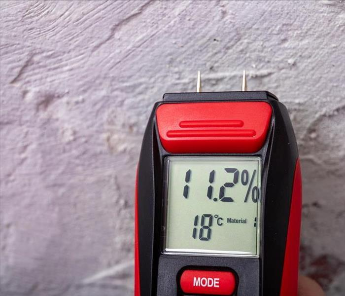 red moisture meter with tipped probes