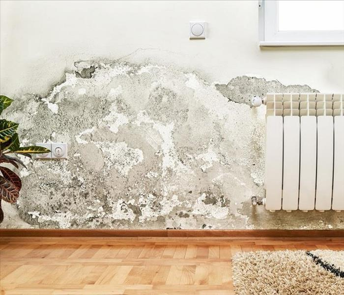 water and mold damage on white interior wall